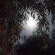 full moon workshop